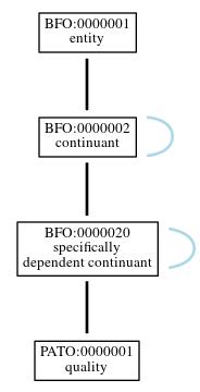 Graph of PATO:0000001